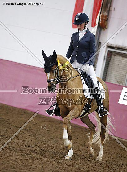 Zauberfee 45 (Cappucino Royale G x Zewana AA - Cognac x)