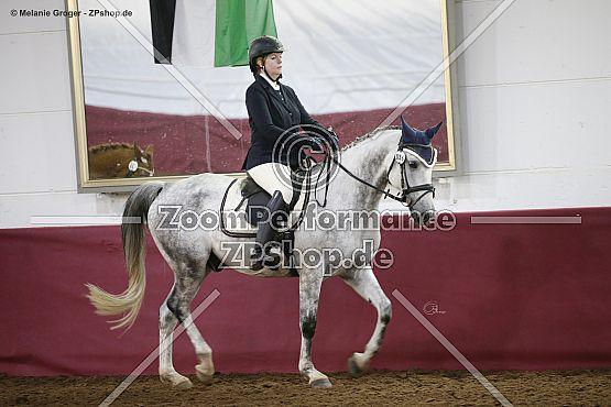 Massimo (Mersuch XIX-68 x Tigra - Ramiro)