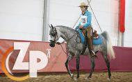 ZPShop - 14. Arab Horse Festival Westphalia 2019