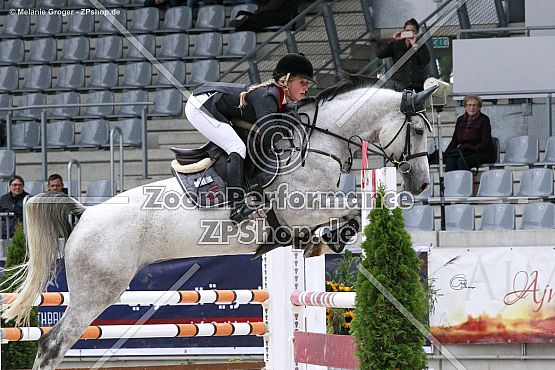 Cool Cat 10 (Co-Pilot x Ginette - Goldcup)