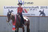 Medal Winners Western Horsemanship