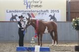 Medal Winners Showmanship at Halter